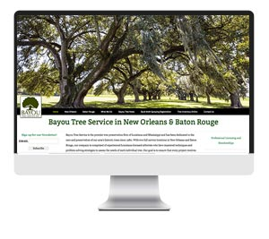 bayou-tree-computer-screen