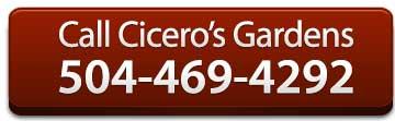ciceros-garden-phone
